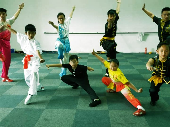 8 Reasons Why Wushu Is Great For Your Child