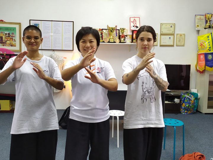 Short Tai Chi Course
