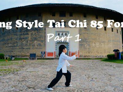 Free Videos | Hua Ying Wushu & Tai Chi Academy
